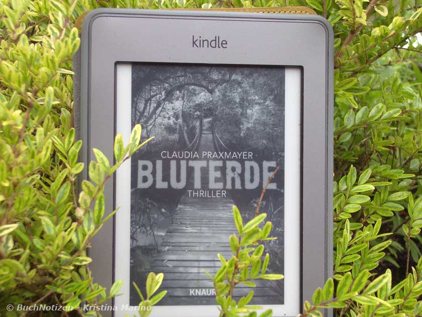 Cover Bluterde