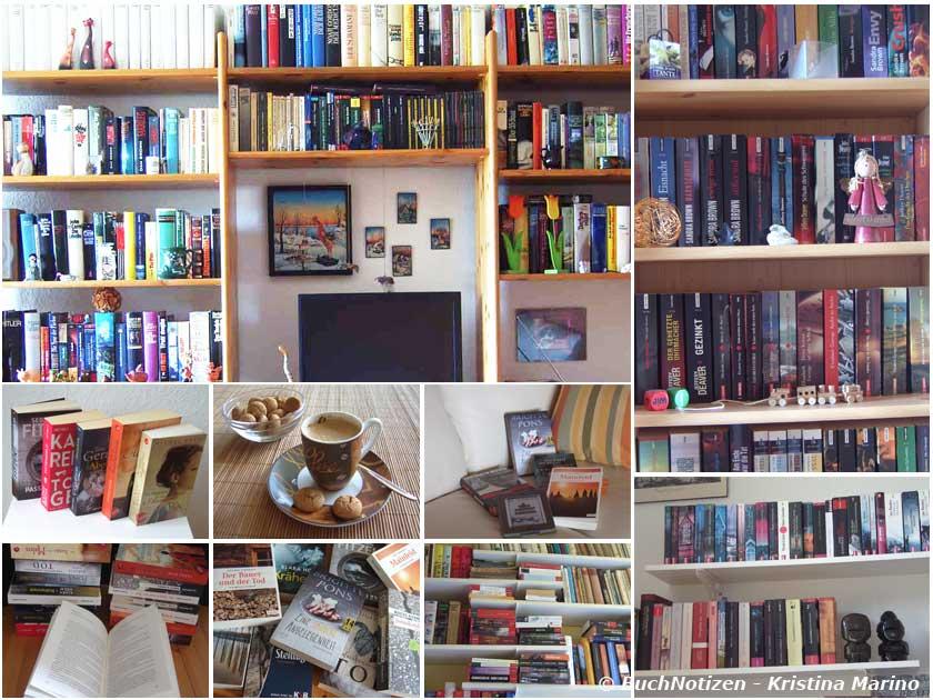 Meine Bücherregale