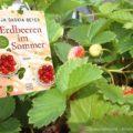 Cover Erdbeeren im Sommer