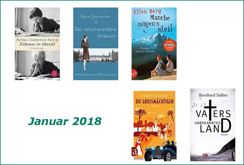Cover Rückblick Januar 2018