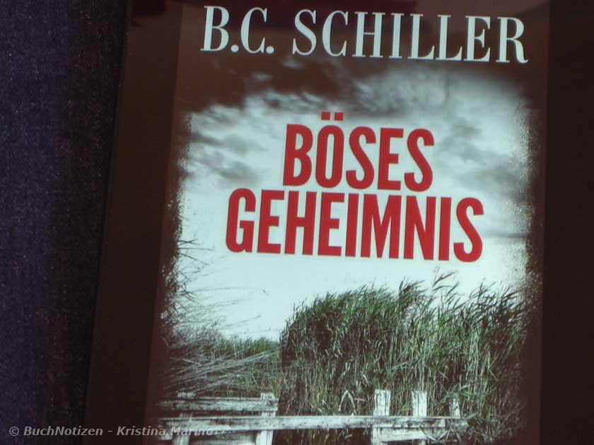 Cover Böses Geheimnis