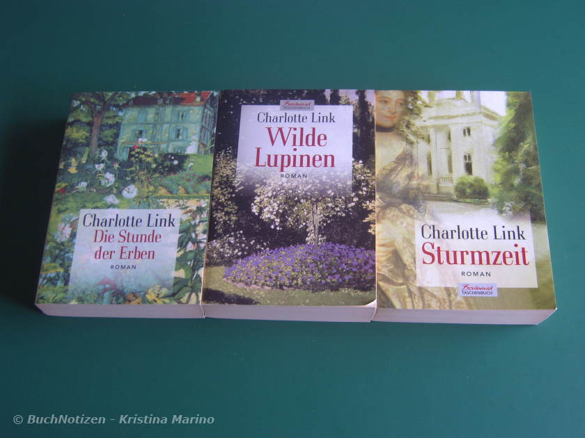 Cover Sturmzeit Trilogie