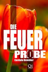 Cover Info Die Feuerprobe