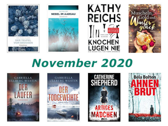 Rückblick Dezember 2020
