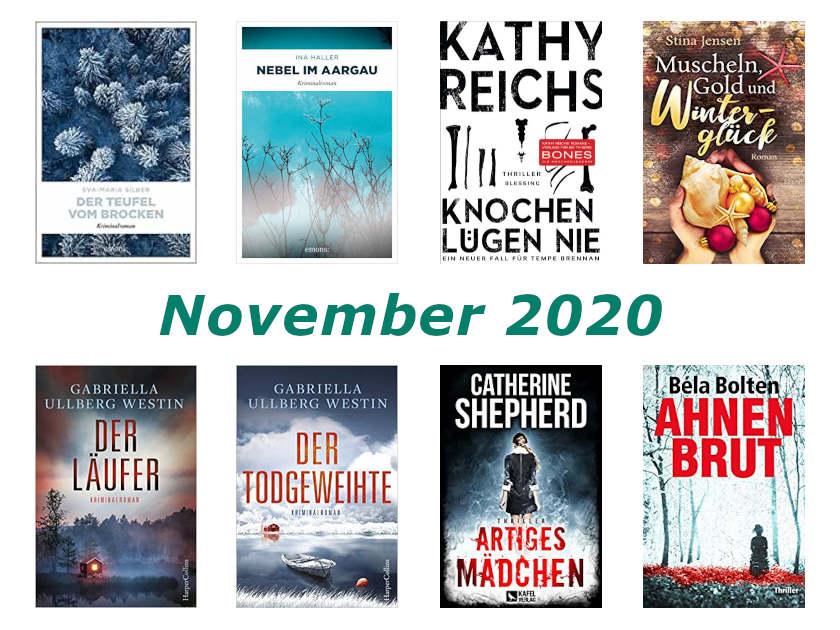 Cover Rückblick November 2020