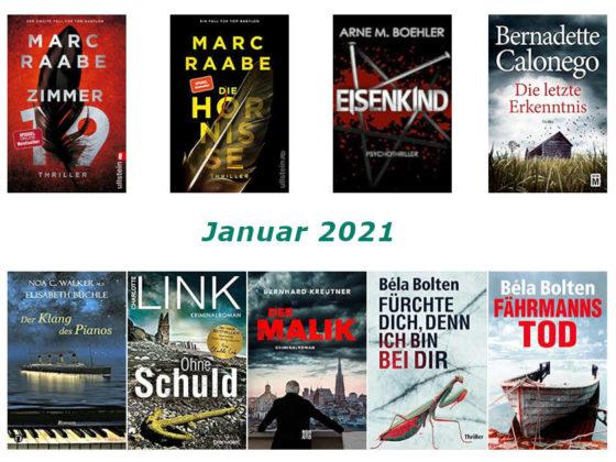 Rückblick Februar 2021